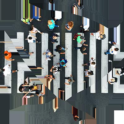 Logo Zèbre - dhig