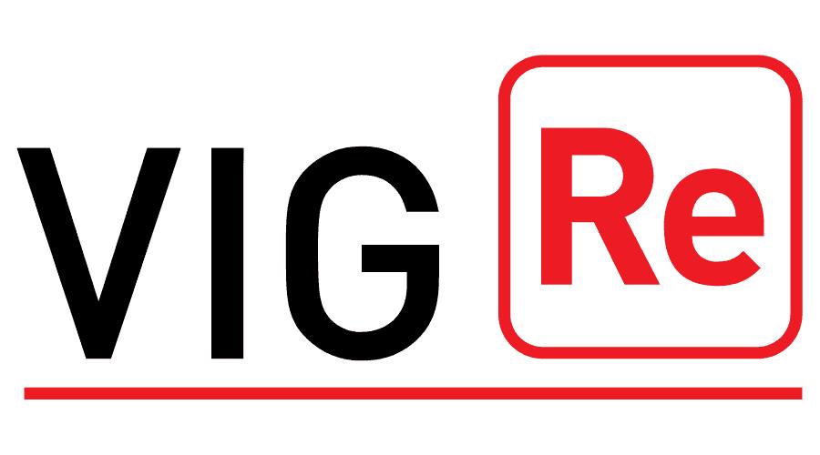 VIG Re